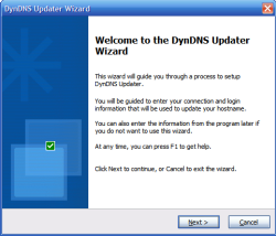 The first page of DynDNS Update wizard